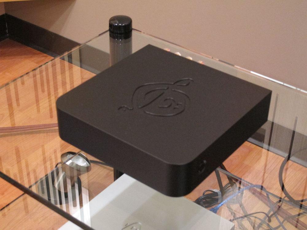 Calyx Femti Class D Power Amplifier
